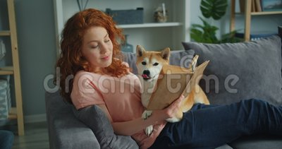 Счастливая молодая женщина наслаждаясь книгой и штрихуя милый doggy сидя на кресле в квартире акции видеоматериалы