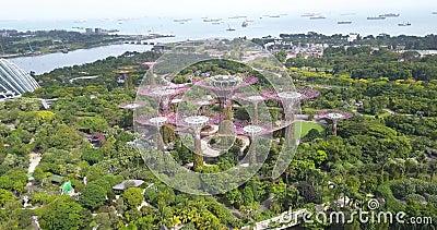 Съемка Supertree Grove, сделанная из воздуха дроном, расположенным над парком, сады у залива, Сингапур видеоматериал