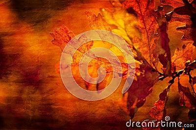 Текстурированные листья