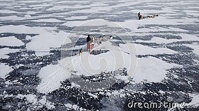 Трутень снял следование команды собаки на Lake Baikal сток-видео
