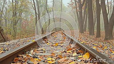 Туман на железной дороге акции видеоматериалы