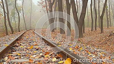 Туман на железной дороге видеоматериал