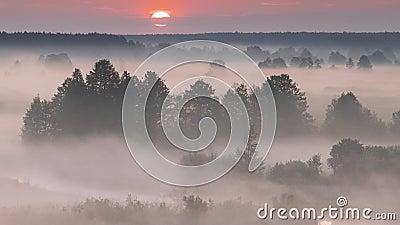 Удивительный рассвет над грязным ландшафтом Сценарийное Видение Утреннего Неба Фогги С Восходящим Солнцем Выше Мрачного Леса И Ре сток-видео