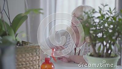 Удовлетворенный пенсионер из Кавказа трогает зеленые листья местных растений и улыбается Привлекательная блондинка восхищается акции видеоматериалы