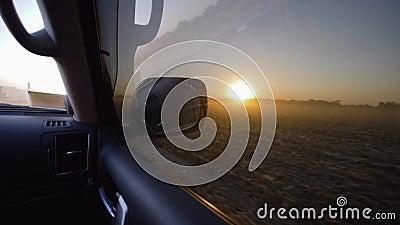 Управляющ в автомобиле за высушенным поднимающим вверх кукурузным полем, красивый ландшафт на заходе солнца во время сбора осени видеоматериал