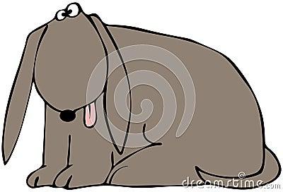 Утомленная собака
