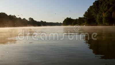 Утро тумана на реке Дунай акции видеоматериалы