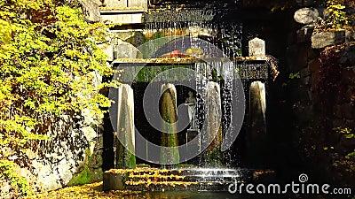 Фетыдий Гротто с памятником Венера, Софиевский парк, Уман, Украина видеоматериал
