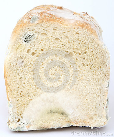 хец хлеба коричневый mouldy