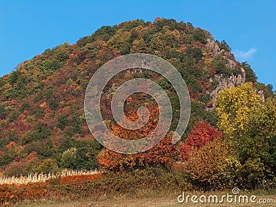 холм colourfull