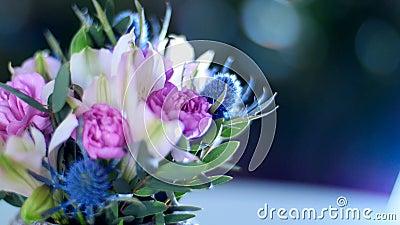 Хрупкость божественной флористической красоты акции видеоматериалы