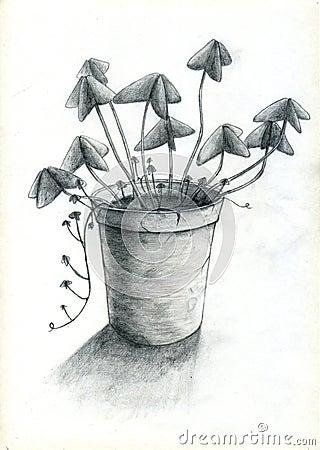 цветочный горшок