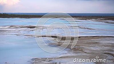 Чайки на голубом озере сток-видео
