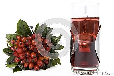 чай rosehips