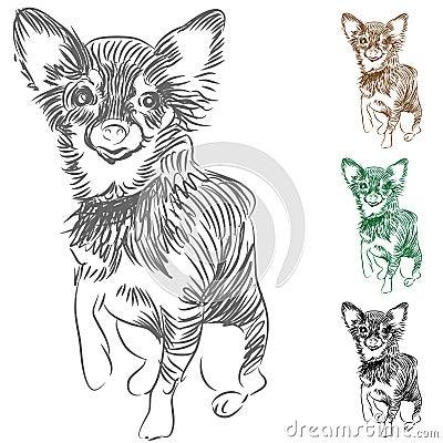 чертеж собаки чихуахуа