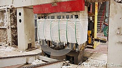 Чистый хлопок-тюки, сжатый после разделения в крупном промышленном хлопковом джине видеоматериал