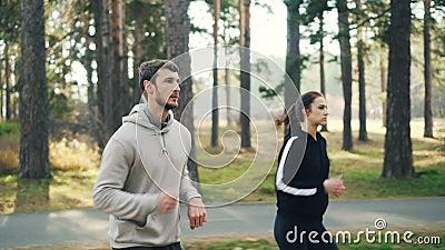 Энергичные молодые люди студентов jogging в парке совместно сконцентрированном на практике на солнечный день осени актеров видеоматериал