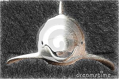 эскиз дельфина