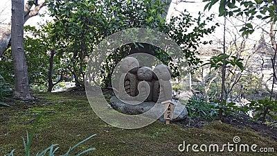 Японская статуя молодых буддийских монахов в японском саду сток-видео