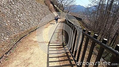 Японский мальчик бежит в японский национальный парк концепция свободы и веселья для детей видеоматериал