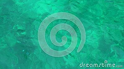 Ясная голубая морская вода Дает зеленую подкраску Слепимость солнца на небольших волнах сток-видео