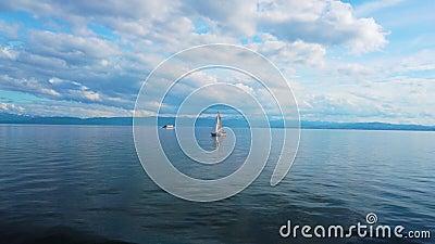 Яхты плавают на озере сток-видео