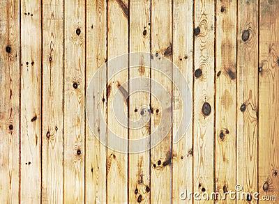 棕色自然纹理木头 库存图片