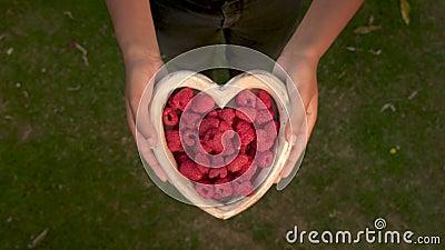一个年轻女人放下心形木碗,鲜红树莓 股票录像