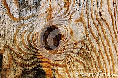 被打结的木背景