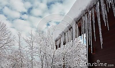 与冰柱的冬天场面
