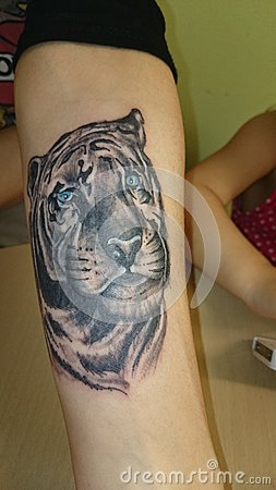 与蓝眼睛的纹身花刺老虎