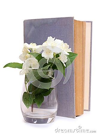 壁纸 花 花束 鲜花 桌面 325_450 竖版 竖屏 手机图片