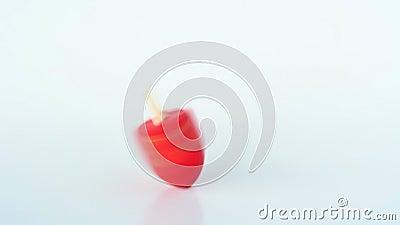 人手旋转一红色dreidel (sevivon)在犹太假日光明节期间,