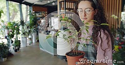 从运转在花店的喷水隆头的逗人喜爱的年轻女人喷壶植物 影视素材