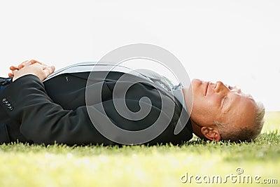 企业草人成熟休眠