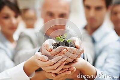 企业藏品人一起种植