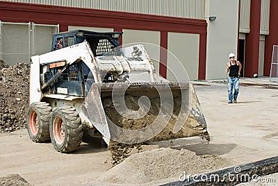倾销沙子的美洲野猫