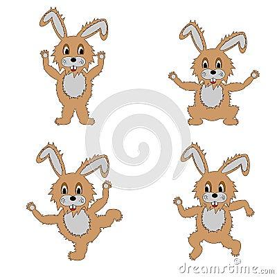 做早晨锻炼的一个滑稽的野兔