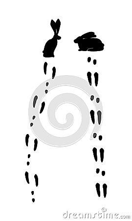 兔子和野兔脚印图片