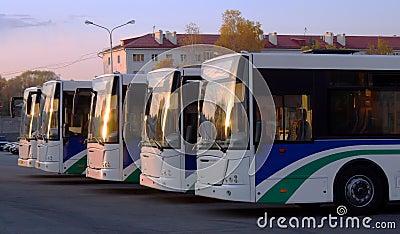 公共汽车线路