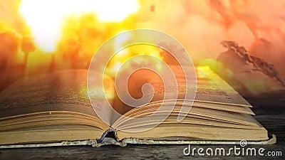 军事书 一本书关于战争 影视素材
