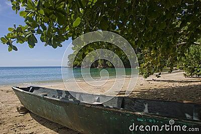 加勒比海滩