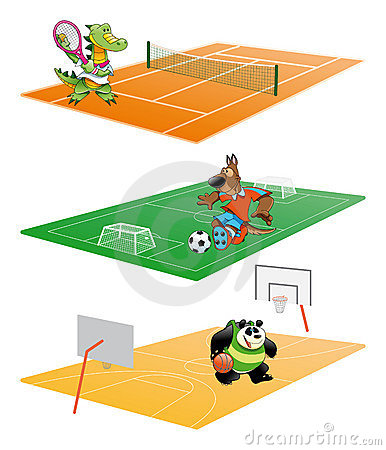 动物体育运动