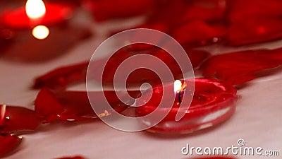 华伦泰` s漂浮在水的天玫瑰 影视素材