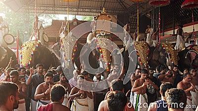 参加印度埃尔讷古拉姆西瓦寺庙节的大象