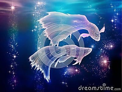 双鱼座鱼 免版税图库摄影 - 图片: 31803697