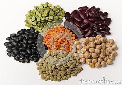 另外豆类种类