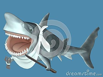 吃准备好的鲨鱼