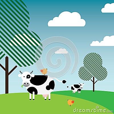 吃草牧场地白色的黑色母牛