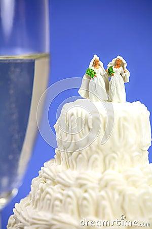 同性概念的同性恋婚姻
